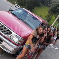 aluguel de limousines (10)