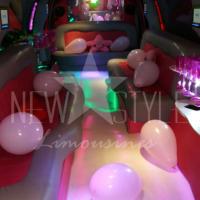 aluguel de limousines (14)