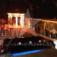 aluguel de limousines (17)
