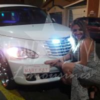 aluguel de limousines (50)