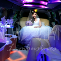 aluguel de limousines (9)
